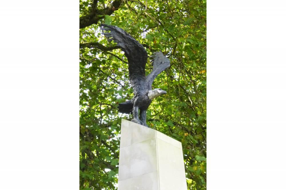 Eagle Squadron detail